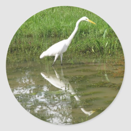 Gran Egret blanco Pegatina Redonda