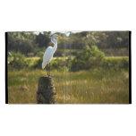 Gran Egret en el caso de Caseable de los humedales