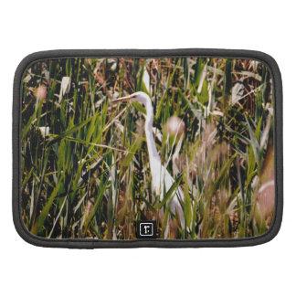 Gran Egret en el lago Balatón Planificador