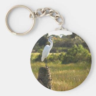 Gran Egret en el llavero de los humedales de Viera
