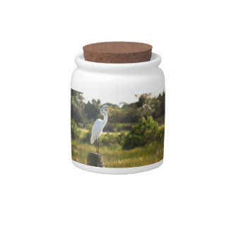Gran Egret en el tarro del caramelo de los humedal Plato Para Caramelo
