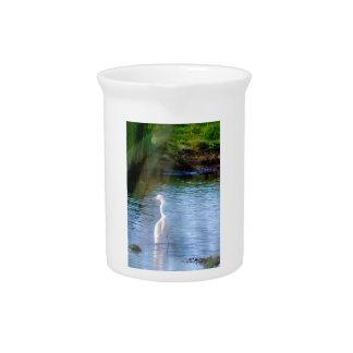 Gran egret en humedales jarras de beber