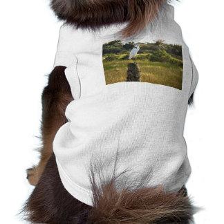 Gran Egret en la ropa del mascota de los humedales Ropa Perro