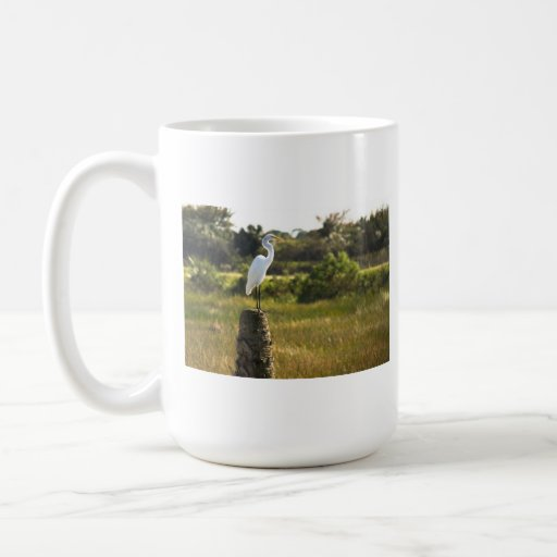 Gran Egret en la taza de los humedales de Viera