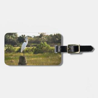 Gran Egret en los humedales de Viera Etiquetas De Equipaje