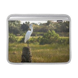 Gran Egret en los humedales de Viera Fundas Macbook Air