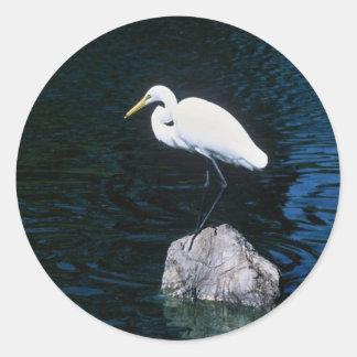 Gran Egret Etiquetas Redondas