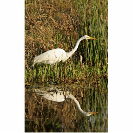 Gran egret que vadea escultura fotográfica