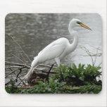 Gran Egret Tapete De Raton