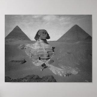 Gran esfinge de Giza Egipto Póster
