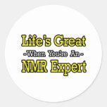 Gran… experto del RMN de la vida Etiquetas Redondas