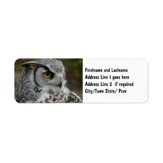 Gran fotografía del búho de cuernos etiquetas de remite