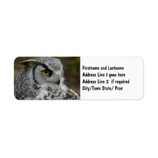 Gran fotografía del búho de cuernos etiqueta de remite
