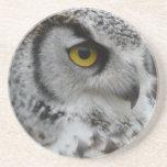 Gran fotografía del búho de cuernos posavasos personalizados