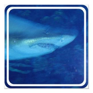Gran invitación del tiburón blanco