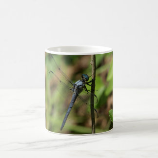Gran libélula azul de la desnatadora, taza