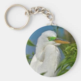 Gran llavero del Egret