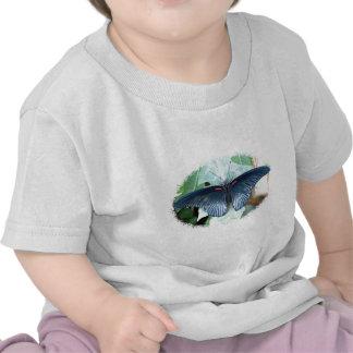 Gran mariposa Mormón-Tropical Camiseta