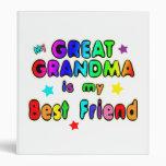 Gran mejor amigo de la abuela