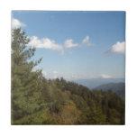 Gran montaña ahumada Vista 3 Azulejos Ceramicos
