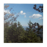 Gran montaña ahumada Vista 5 Tejas Cerámicas