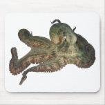 Gran octapi del pulpo del océano tapetes de ratones