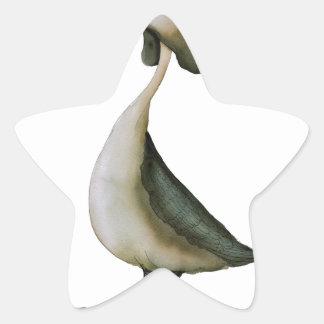 gran pájaro salvaje del grebe con cresta, pegatina en forma de estrella