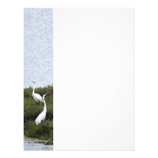 Gran papel con membrete de los Egrets Membrete A Diseño