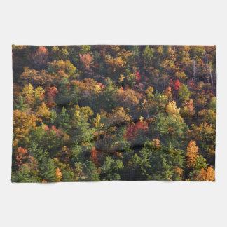 Gran parque nacional de la montaña ahumada toalla de cocina