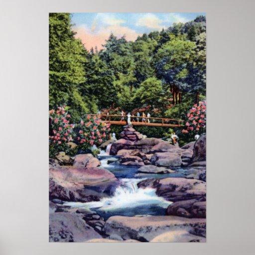 Gran pasarela de las montañas de Smokey a los tops Poster