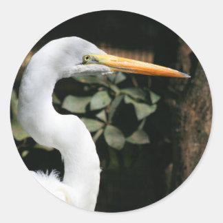 Gran pegatina blanco del Egret