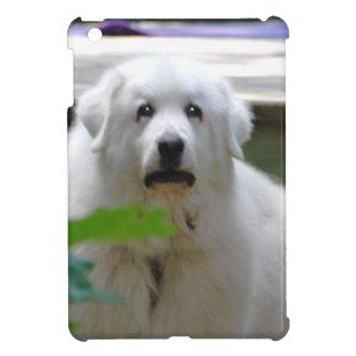 Gran perro blanco de los Pirineos