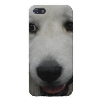 Gran perro blanco de los Pirineos iPhone 5 Funda