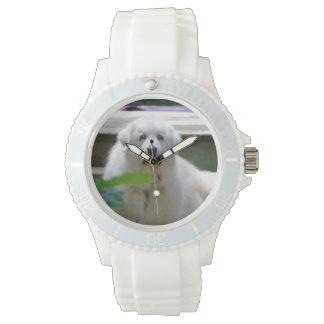 Gran perro blanco de los Pirineos Reloj De Mano