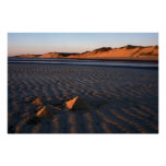 Gran playa Wellfleet Cape Cod de la isla Posters