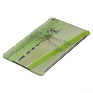 Gran Pondhawk, vesiculosa de Erythemis, adulto Funda Para iPad Air
