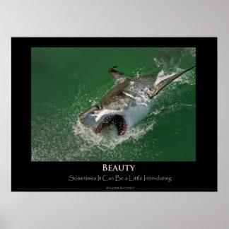 """Gran poster de la """"belleza"""" del tiburón blanco"""