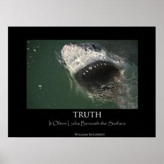 """Gran poster de la """"verdad"""" del tiburón blanco"""