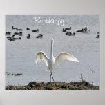 Gran poster del Egret