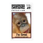 Gran protección roja del orangután del mono