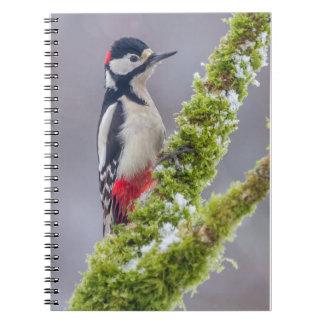Gran pulsación de corriente manchada del cuaderno