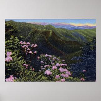 Gran punto del púlpito de las montañas de Smokey Poster