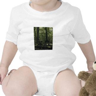 Gran reserva triste del nacional del pantano trajes de bebé