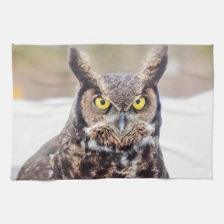 Gran retrato del búho de cuernos toalla de cocina