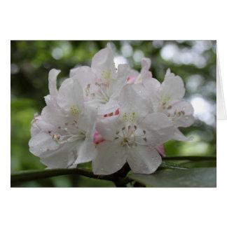 Gran rododendro tarjeta de felicitación