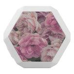 gran rosa de rosas del jardín