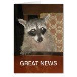 Gran tarjeta de las noticias del mapache