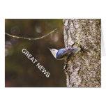 Gran tarjeta de las noticias del pájaro