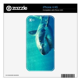 GRAN TIBURÓN BLANCO 1 iPhone 4 CALCOMANÍA