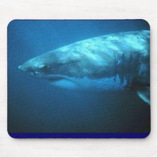 Gran tiburón blanco alfombrillas de raton